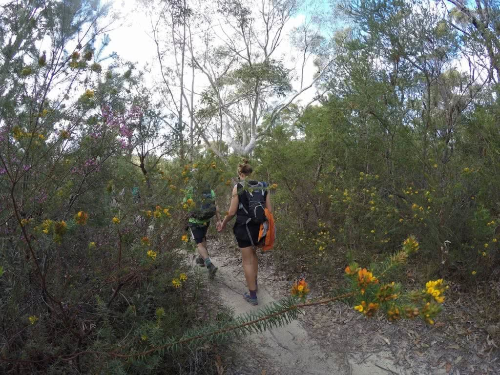 Oxfam Trailwalker 2017 Calumn Hockey Hiking in the Flowers, woman, walking, bush