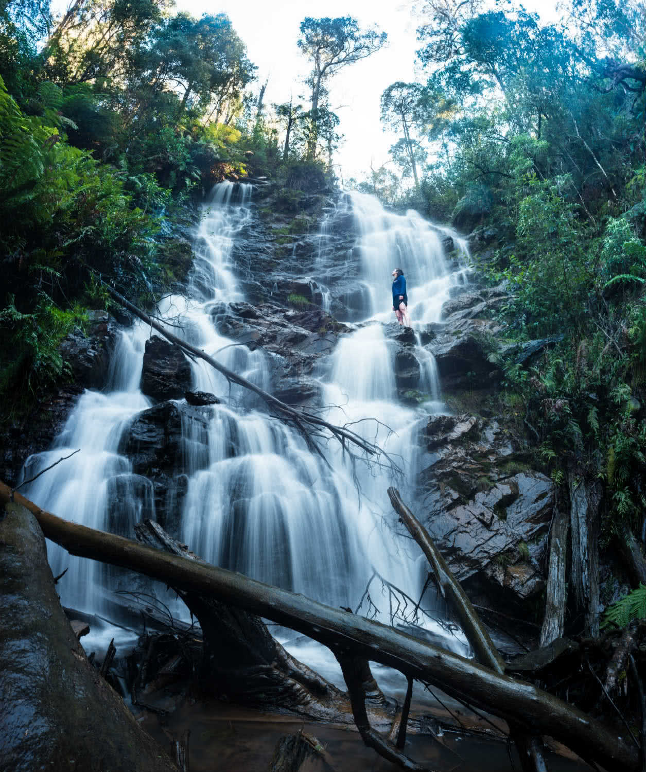 8 Ridiculously Beautiful Victorian Waterfalls To Chase This Summer Pat Corden, waterfall, log, water, Wombelano Falls