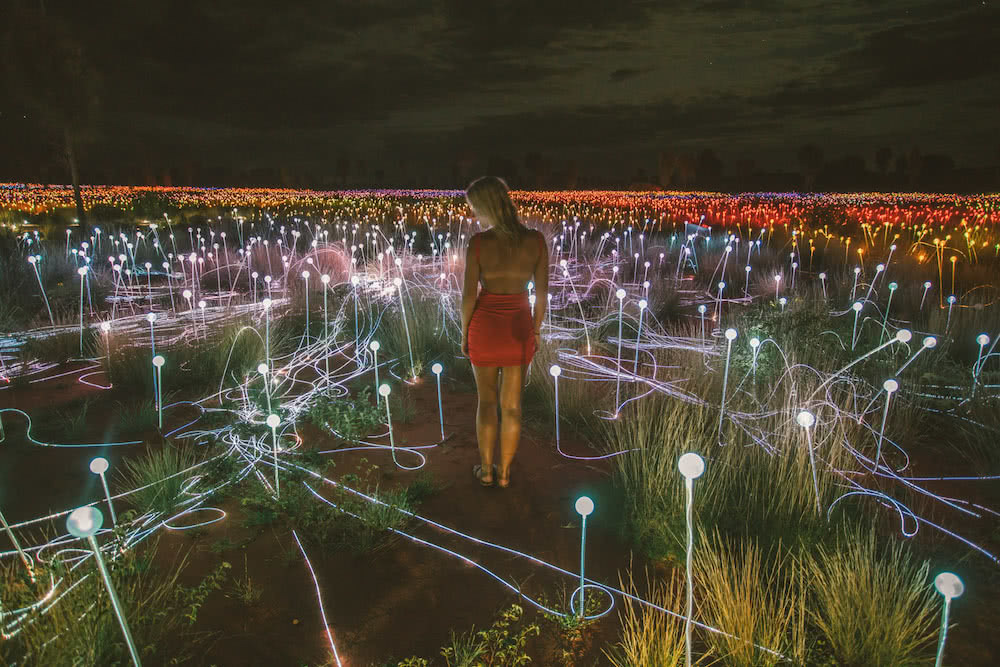 field of light mitch cox red centre road trip