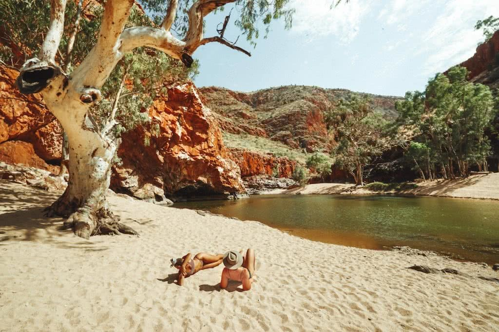 JACKSON GROVES ormiston gorge red centre road trip