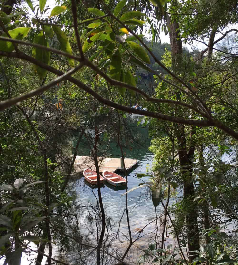 Mount Kuring-Gai to Berowra, Matt Pearce, river, paddle boats, nsw, 10 walks near sydney you can reach by train