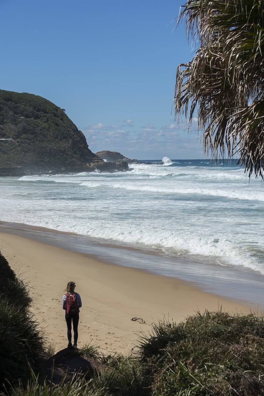 Otford to Burning Palms, Matt Pearce, beach, hike, coastal walks, 10 walks near sydney you can reach by train, nsw