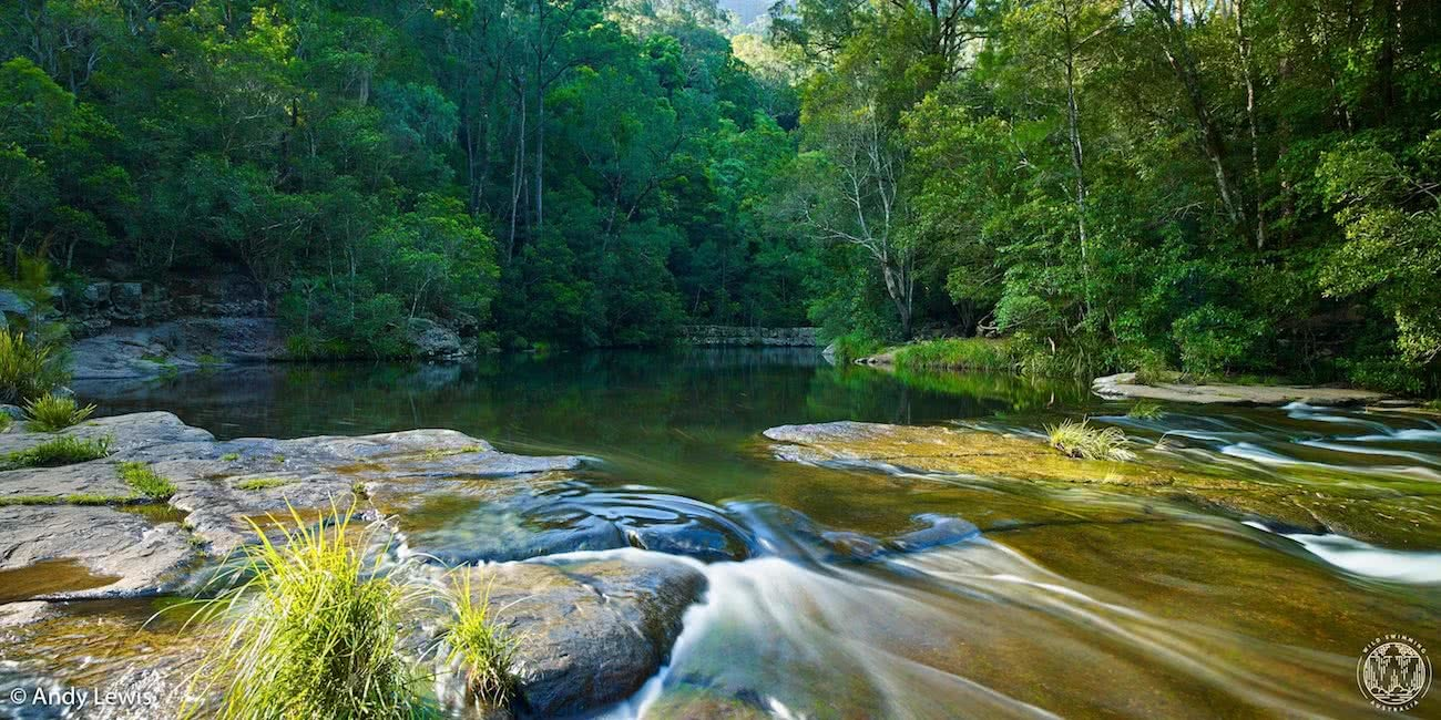 andy lewis, wild swimming australia, flat rock, swimming hole, shoalhaven