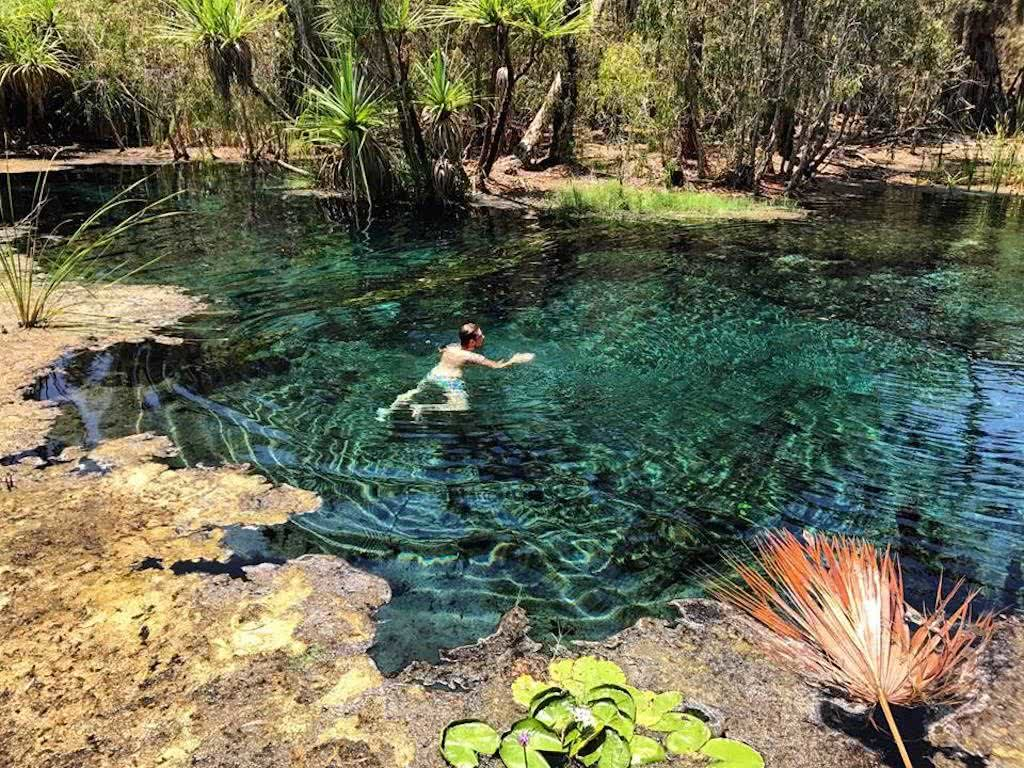 A Top End Wild Swimming Adventure NT Tiffany Hulm, Eswimmer, turquoise water, lillies, Bitter Springs, swimming hole