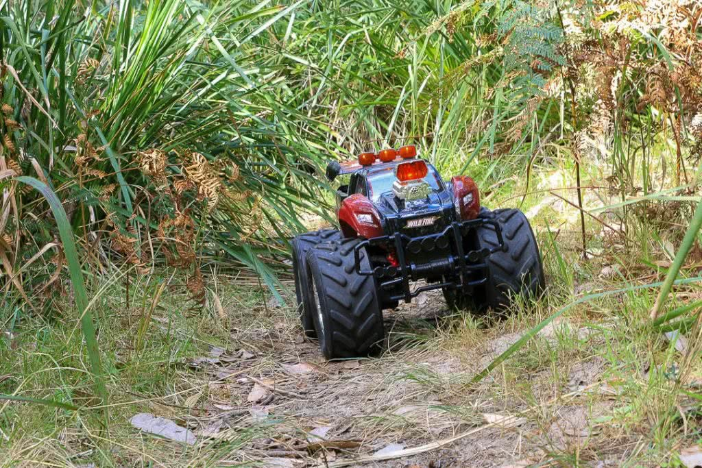 A Family Adventure Among The Burrawangs // Conjola Beach (NSW) drone, Melissa Bowyer, remote control car, tyres, grass