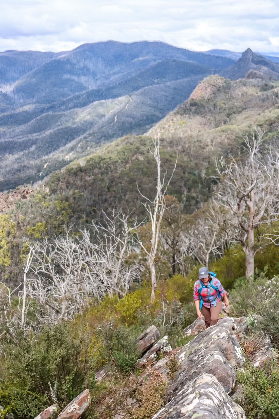 Cathedral Range State Park VIC Chris Paola, trees, ridge, mountains, hiker, woman, summit approach