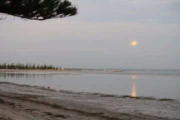 Seven Super Sweet Fishing Spots Near Melbourne Mark Kayak Guru, moon, reflection, glassy water, still, beach, lake, water's edge, Altona Pier Beach