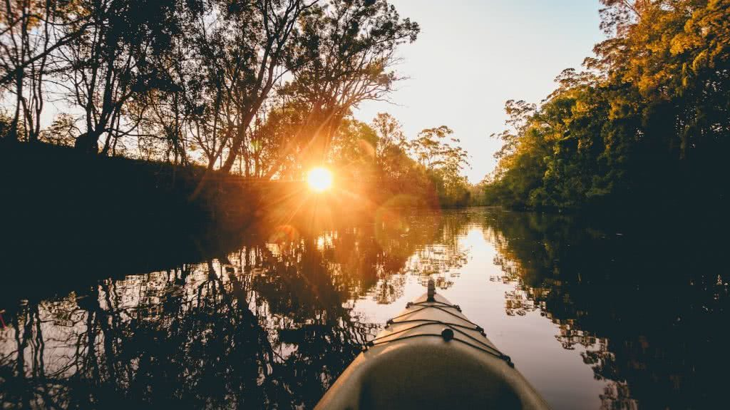 7 Killer Kayak Adventures On The Sunshine Coast (QLD), Scout Hinchliffe, water, glassy, reflection, sunburst, trees, MAROOCHY RIVER TRAIL