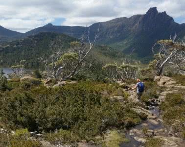 The Best Side Trip On The Overland Track? // Pine Valley Hut (TAS), Brooke Nolan, Labyrinth3, trees, bush, mountains
