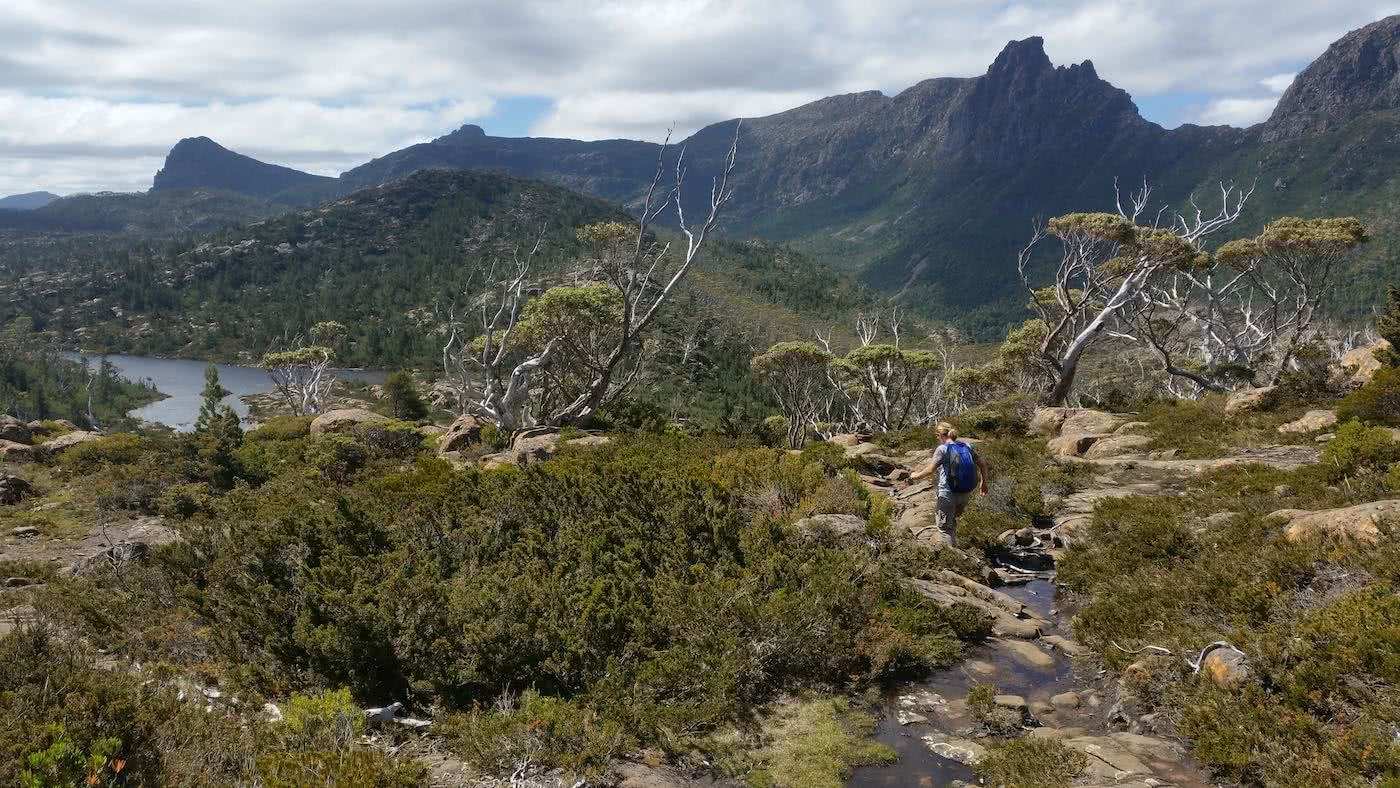 The Best Side Trip On The Overland Track? // Pine Valley ...