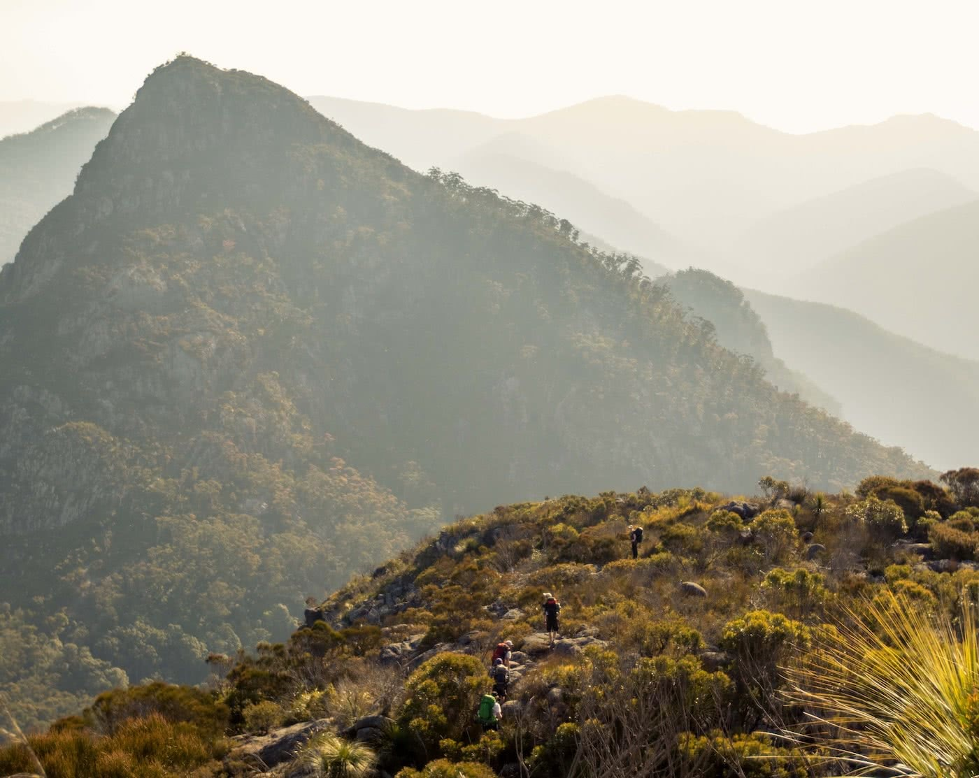 Jacquie Tapsall // Explorer Of The Month - February '18, Mt Barney, mountain, bush, hikers, range