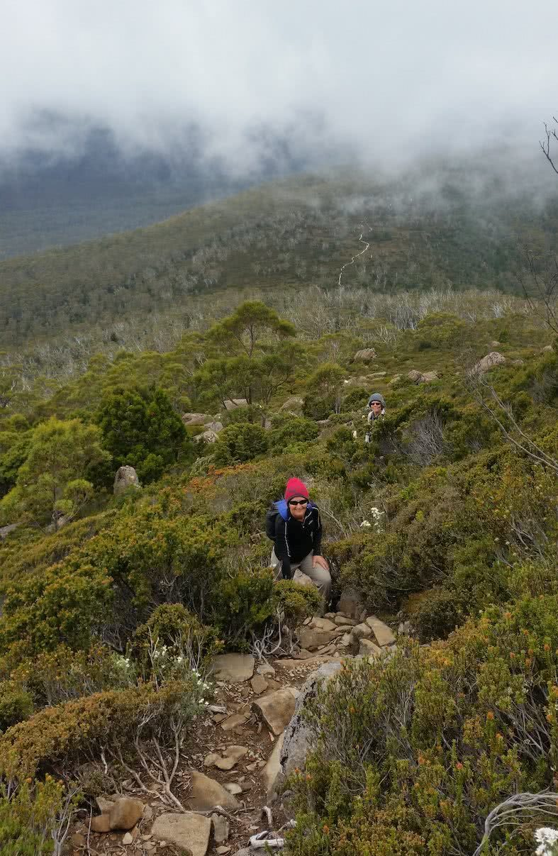The Best Side Trip On The Overland Track? // Pine Valley Hut (TAS), Brooke Nolan, The Acropolis, hiker, red beanie, mist, bush, green