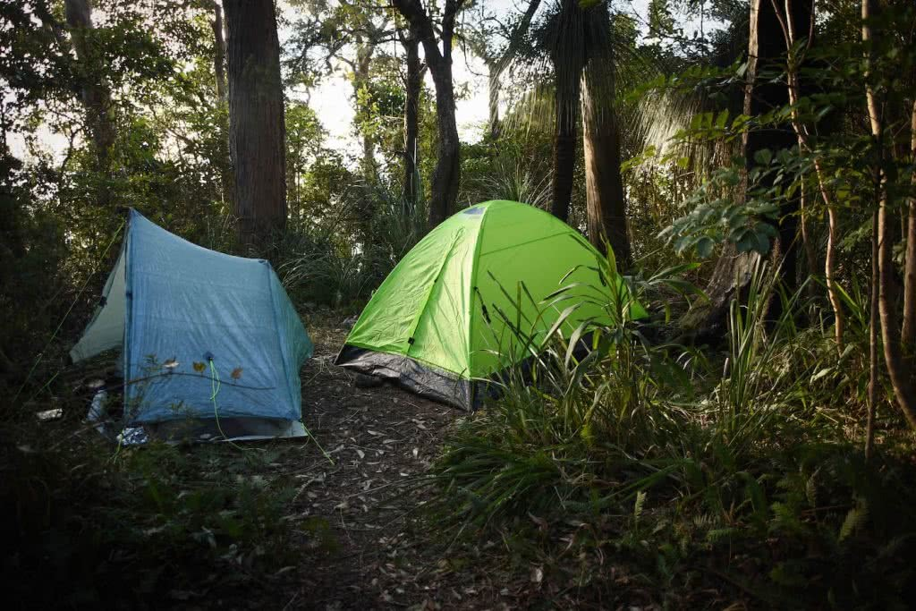 Does Your Loungeroom Have A View Like This? // Main Range NP (QLD) Lisa Owen_Bushcamp, tents, trees, camp, pitched