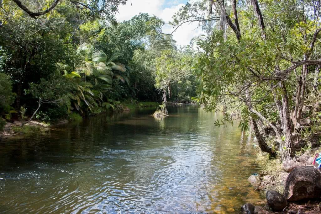 Straight Outta The Seventies // Finch Hatton Gorge (QLD), Jacquie Tapsall, swimming hole, swimmers, trees, creek