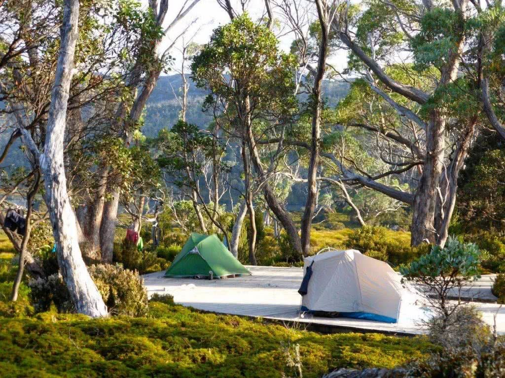 Highlights Of The Overland Track (VIC) Camping - Sarah Barlow, tents, platform, trees