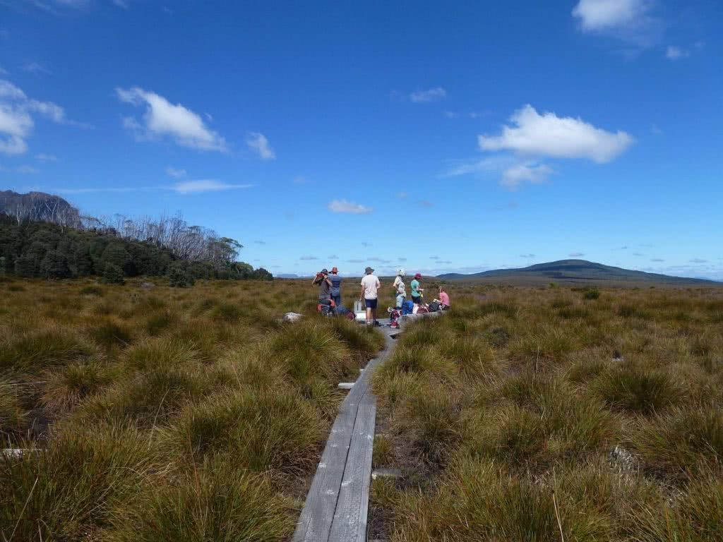 Highlights Of The Overland Track (VIC) Coffee Break number 3 - Sarah Barlow, track, platform, group, hikers
