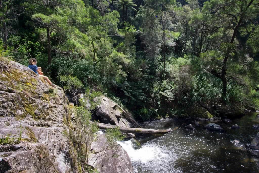 Wet Feet And Waterfalls // Cumberland River Trail (VIC), Isobel Campbell, Cumberland Falls, trees, water, pool, cliff, falls