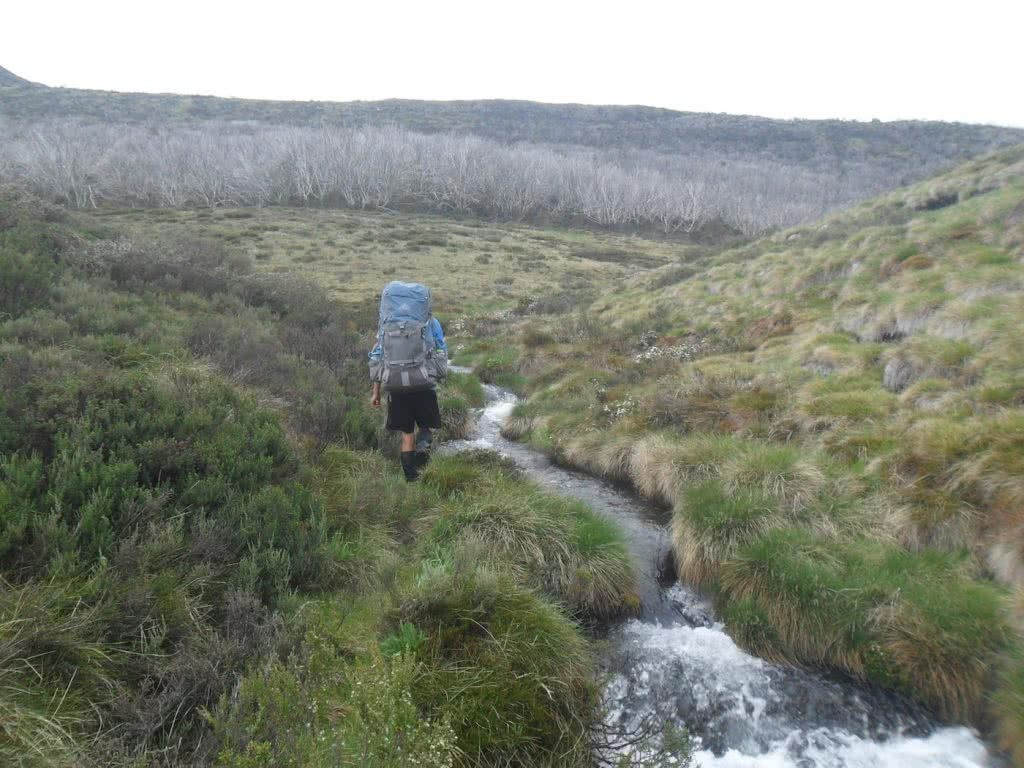 Welcome to Mt Jagungal (We Got Mist and Rain) // Kosciuszko NP (NSW), Sam Christie, stream, creek, river, backpack, hiker