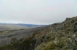 Welcome to Mt Jagungal (We Got Mist and Rain) // Kosciuszko NP (NSW), Sam Christie, low cloud, fog, hillside, view