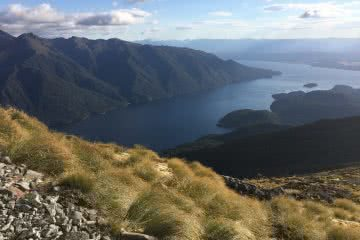 It's A Really Great Walk // Kepler Track (NZ), Nicholas Di Genni, Lake Te Anau, South Fiord, grass, water, distance