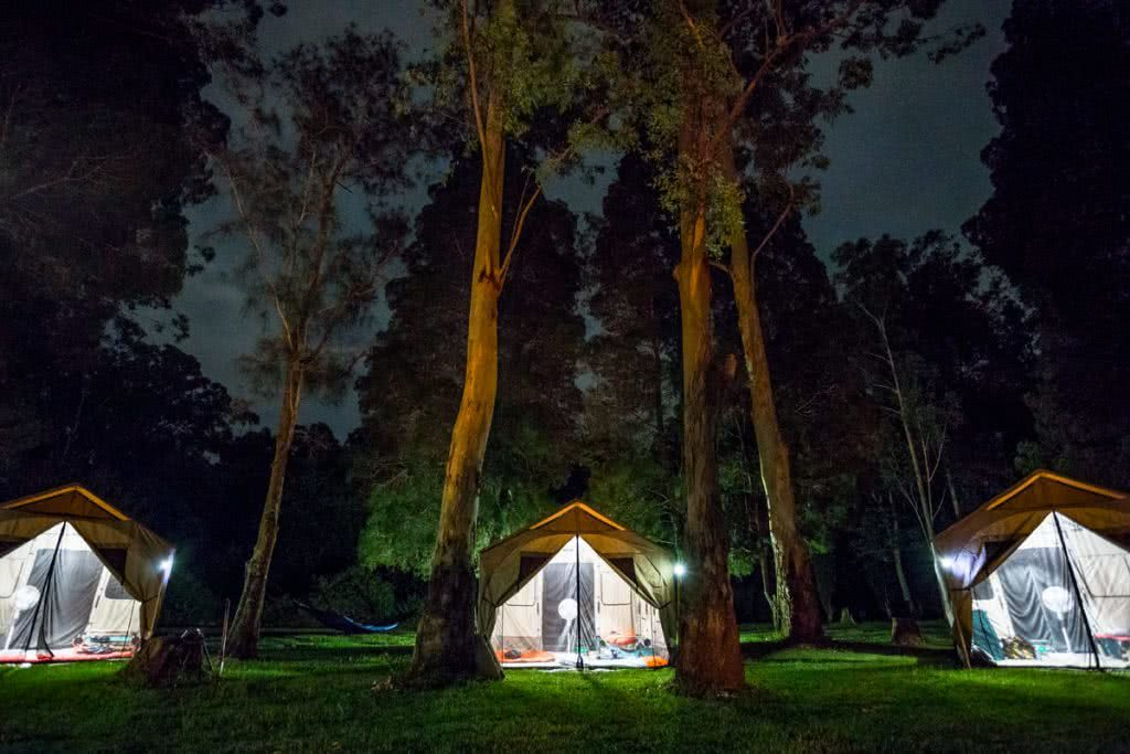 Barebones Living At The AMK Glamp Out // Product Launch, Liam Hardy, Outfitter-Tent-, clamping, lit up, night time, woods, big tent, family sized, front door, welcome home