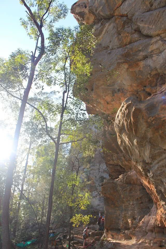 A Climbing Mecca Near Brisbane // Brooyar State Forest (QLD), Saphira Schroers, rock face, forest, sunlight, overhang