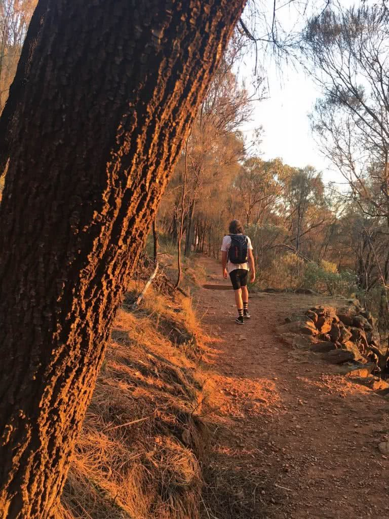 Saturday Night In The City // Mt Majura Sunset Hike (ACT), Mattie Gould, Hike, hiker, tree trunk, trail