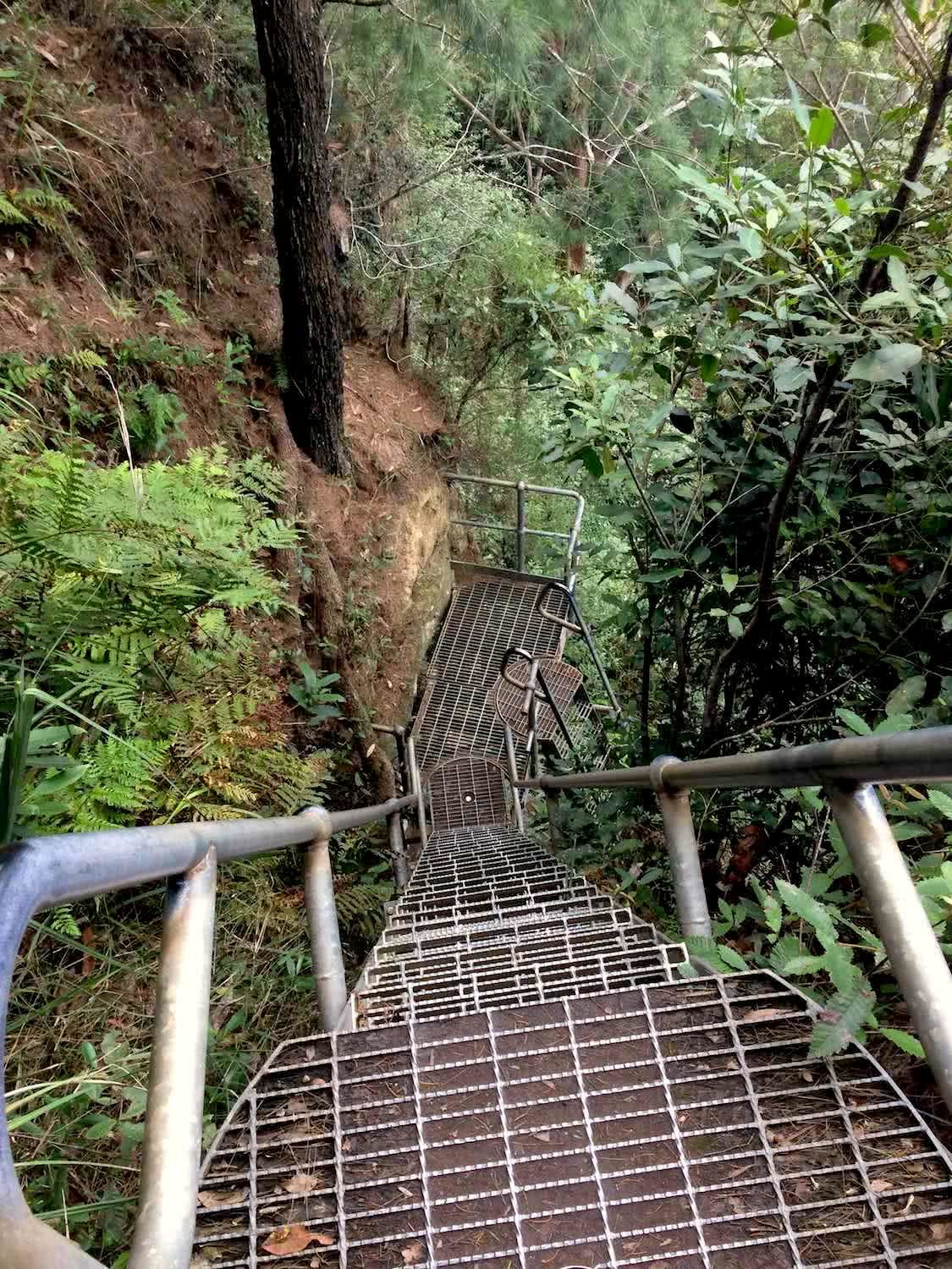 Sublime Point Ladders, nicholas di genni, illawarra, best walks, microadventure,
