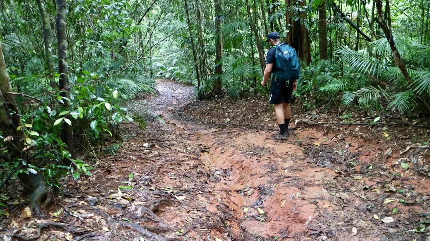Windin Falls // A Tropical Tableland Oasis (QLD), Grant Purcell, muddy, trail, track, woods, hiker