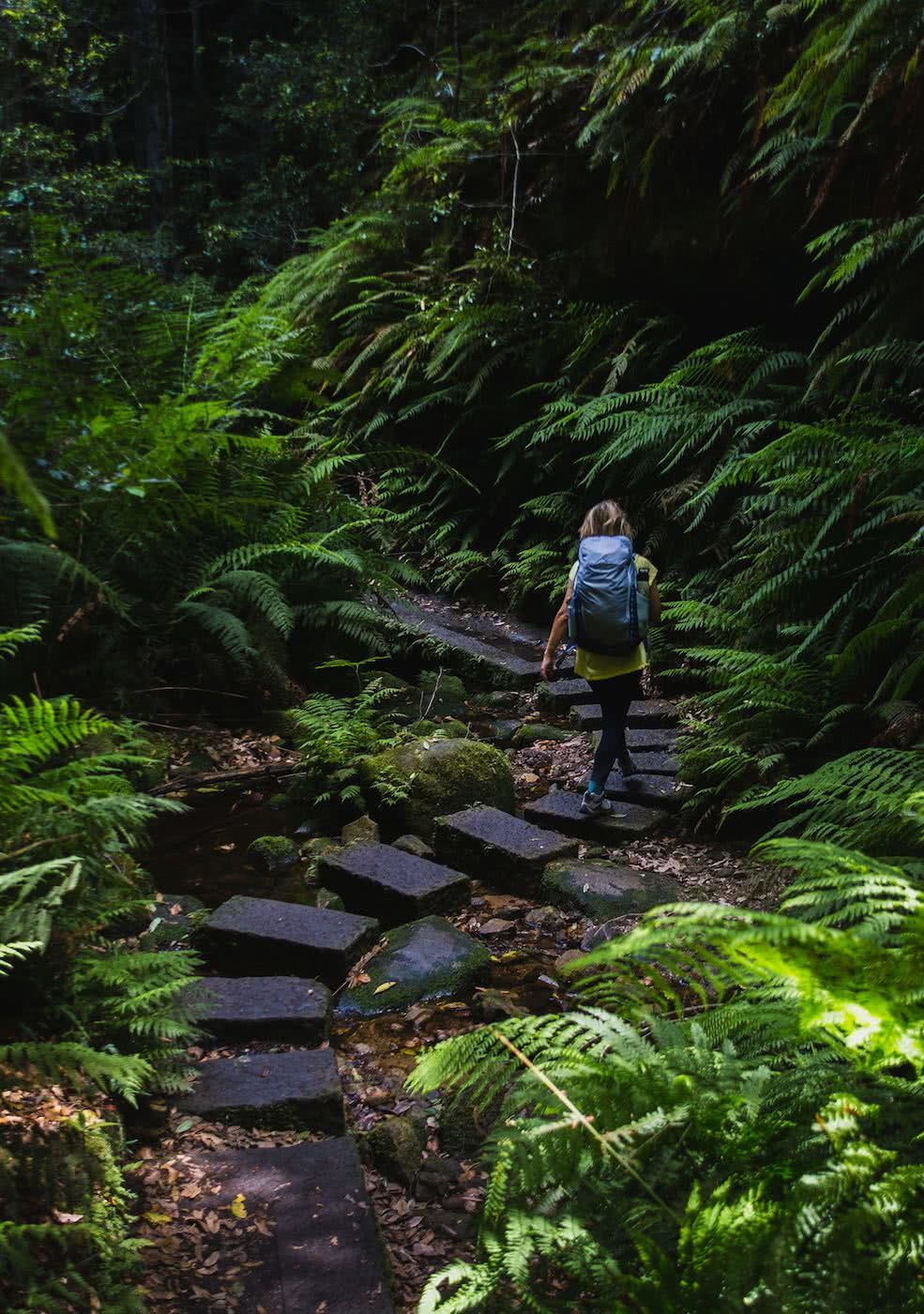 Escape From The Urban // Blackheath To Acacia Flat (NSW), Matt n Kat Pearce, Kat winding path, stepping stones, ferns, hiker, backpack, trail