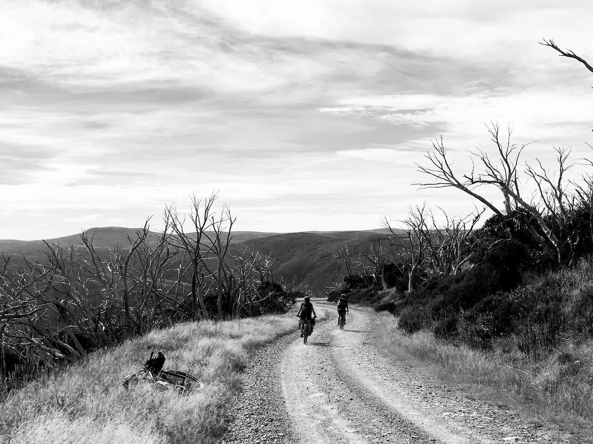 mattie gould, bikepacking, jagungal wilderness, nsw, black and white, photo essay,