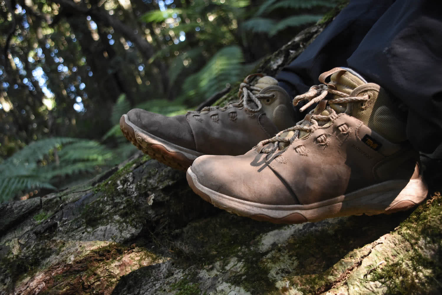 Teva Arrowood, waterproof mid hiking boot, gear review, lisa owen, scenic rim, south east queensland, hero