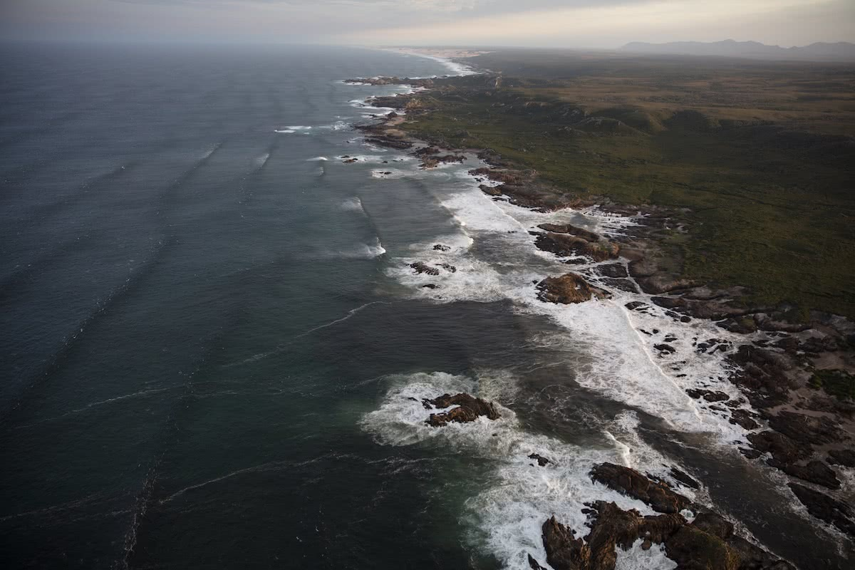 K Wright, tarkine, takayna, tasmania, world heritage protection, aerial, coastal, waves