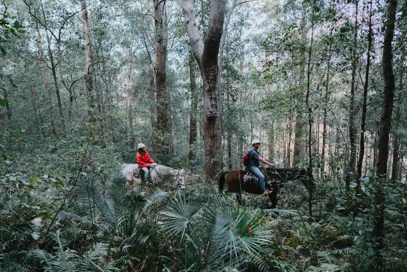Coastal Cruising // The Great Southern NSW Road Trip, Ashlee Kehoe-Sporton, photo by Ain Raadick, horseriding, forest