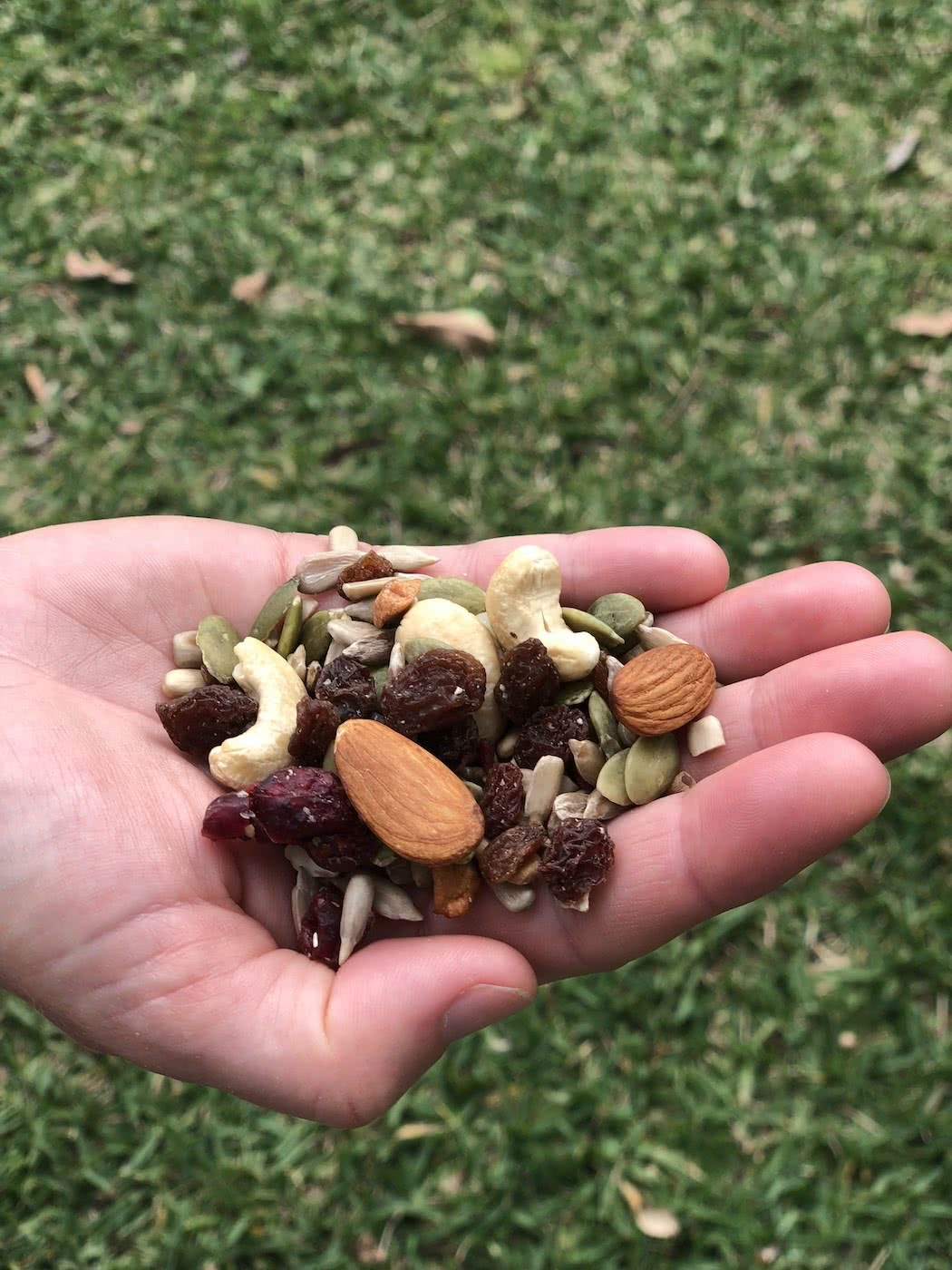 Scroggin // What's In It And Why's It So Damn Good?, photo by Andy Lewis, hand, food, nuts, trail mix, snack