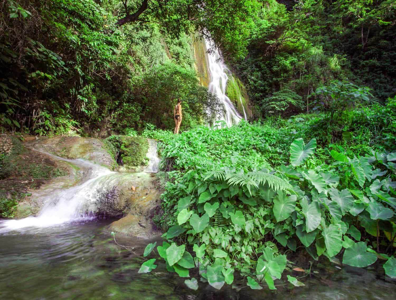 Exploring Efate's Jungle Waterfalls (Vanuatu), JoelJohnsson_Mele Cascades, greenery, jungle, plants, water, woman