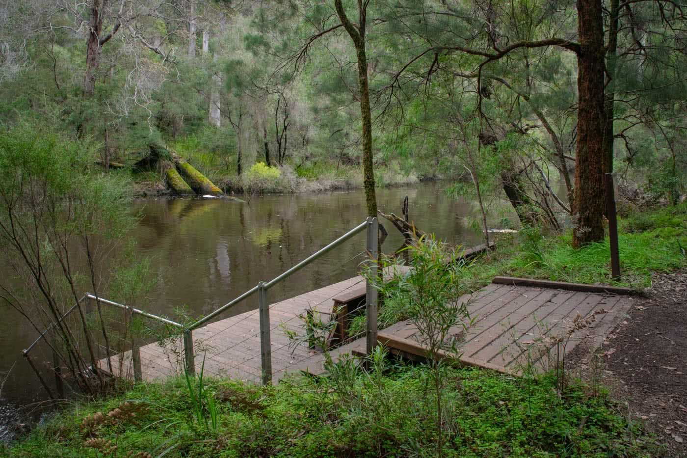 Tree Climbing And Wild Swimming - The Warren River NP // Pemberton (WA), Mark Pybus, jetty, river, steps
