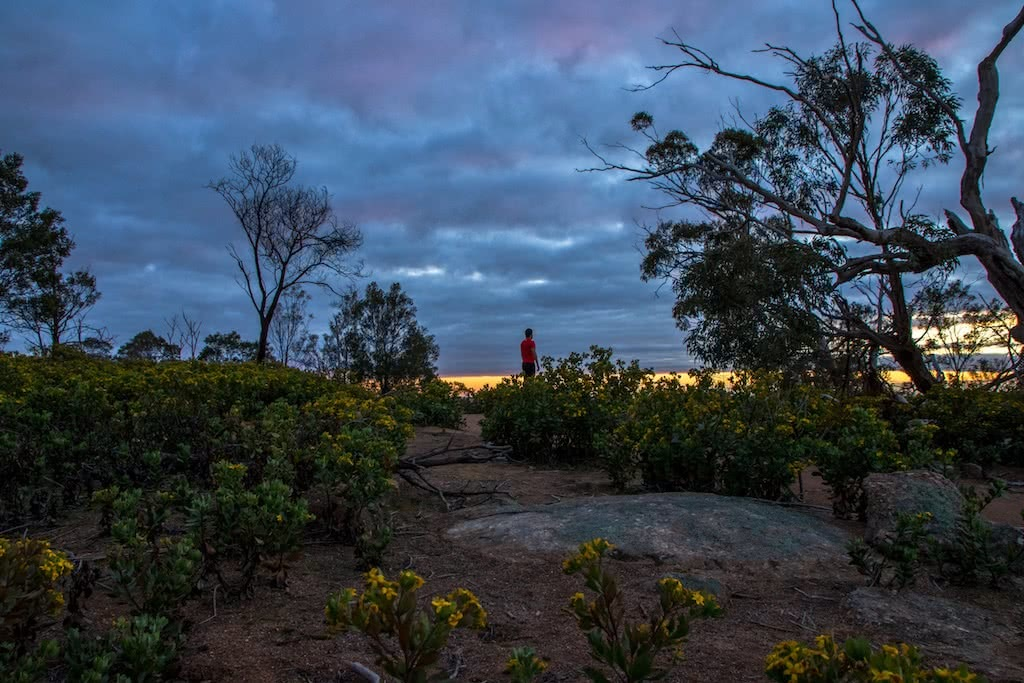 The Beauty Of An Early Morning Run, Michelle Linnane, trail running month, victoria, vibe