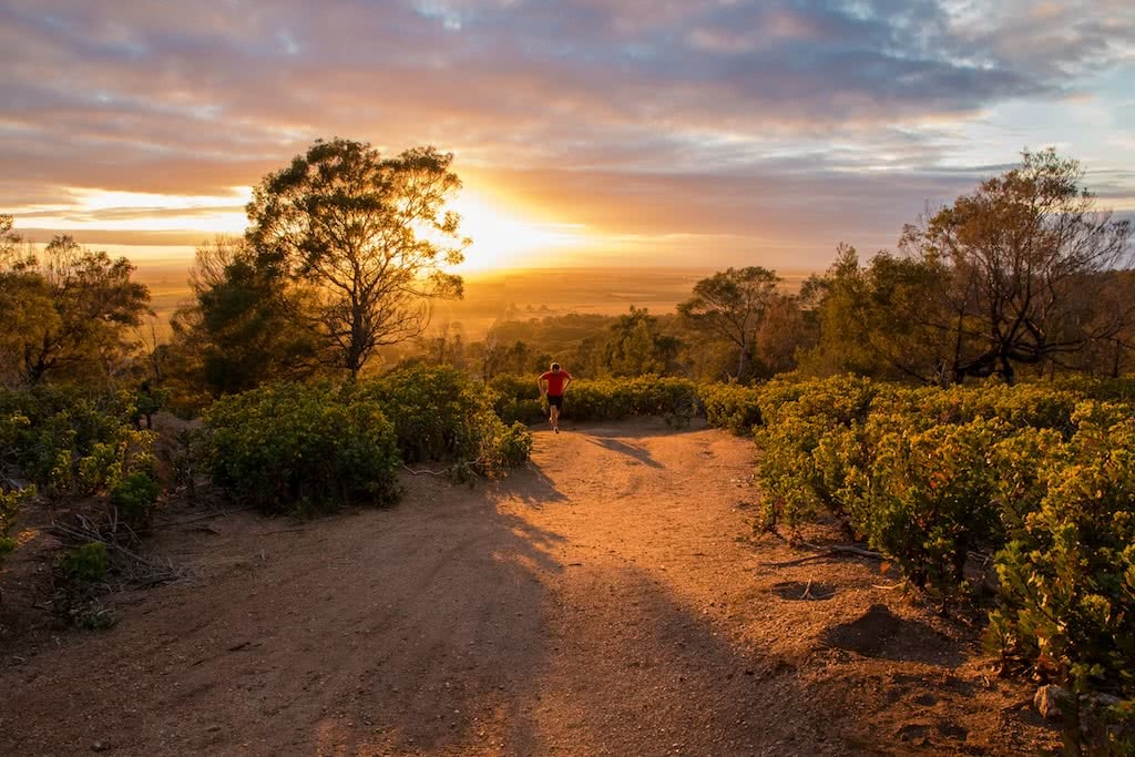 The Beauty Of An Early Morning Run, Michelle Linnane, trail running month, victoria, vibe, sunrise