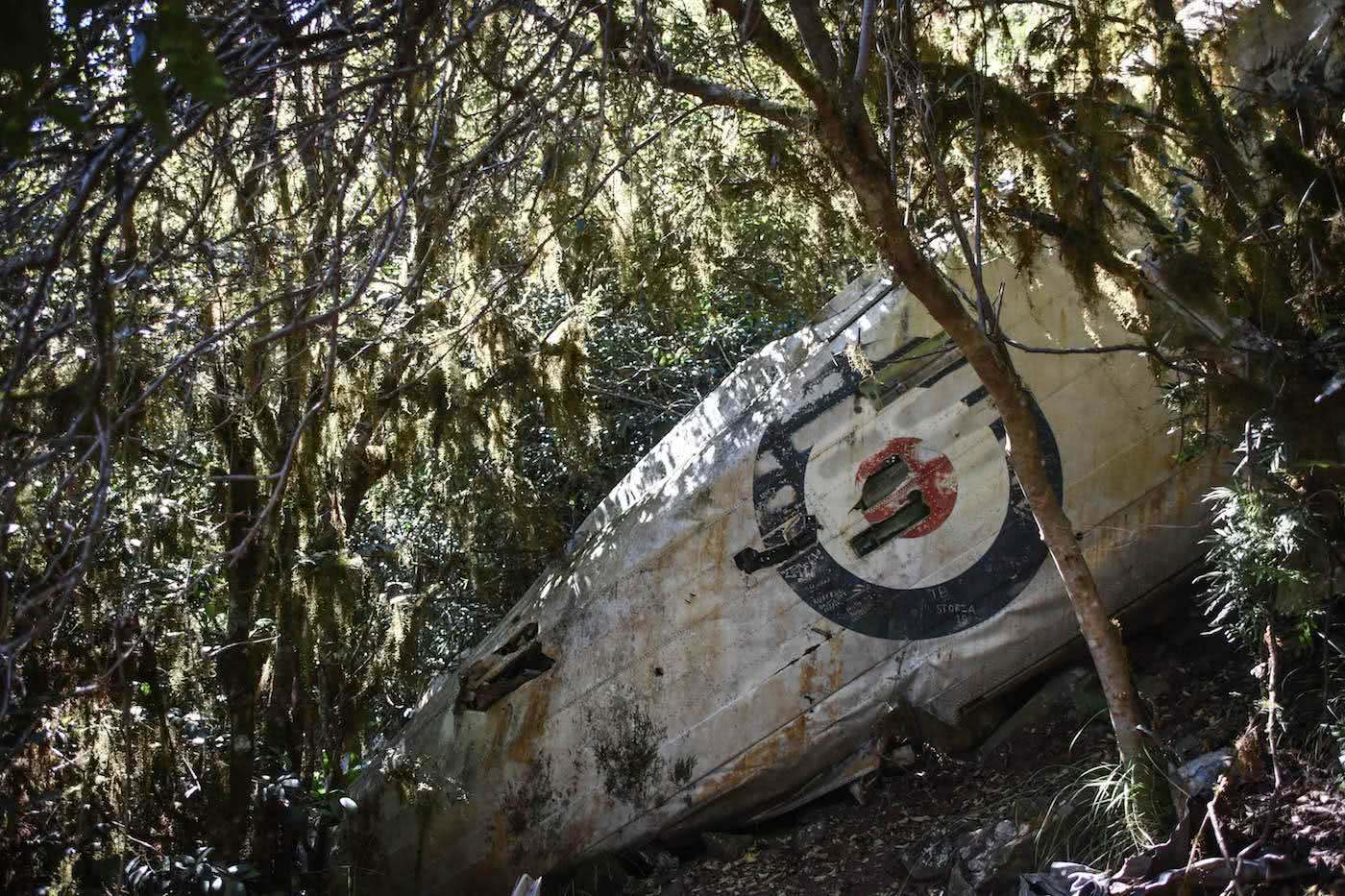 Hike To The Lincoln Bomber Wreck // Mt Superbus (QLD), Photo by Lisa Owen, Scenic Rim, mountains, planes, hiking, queensland, target