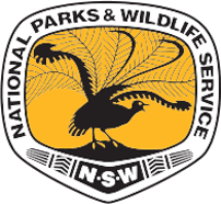 WAE christmas gift guide National Parks Pass