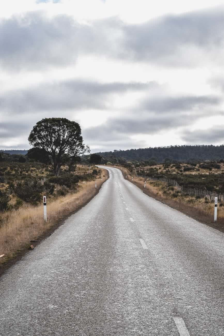 Winter Road Trippin' Tassie // Photo Essay Brent Frondall road, trees