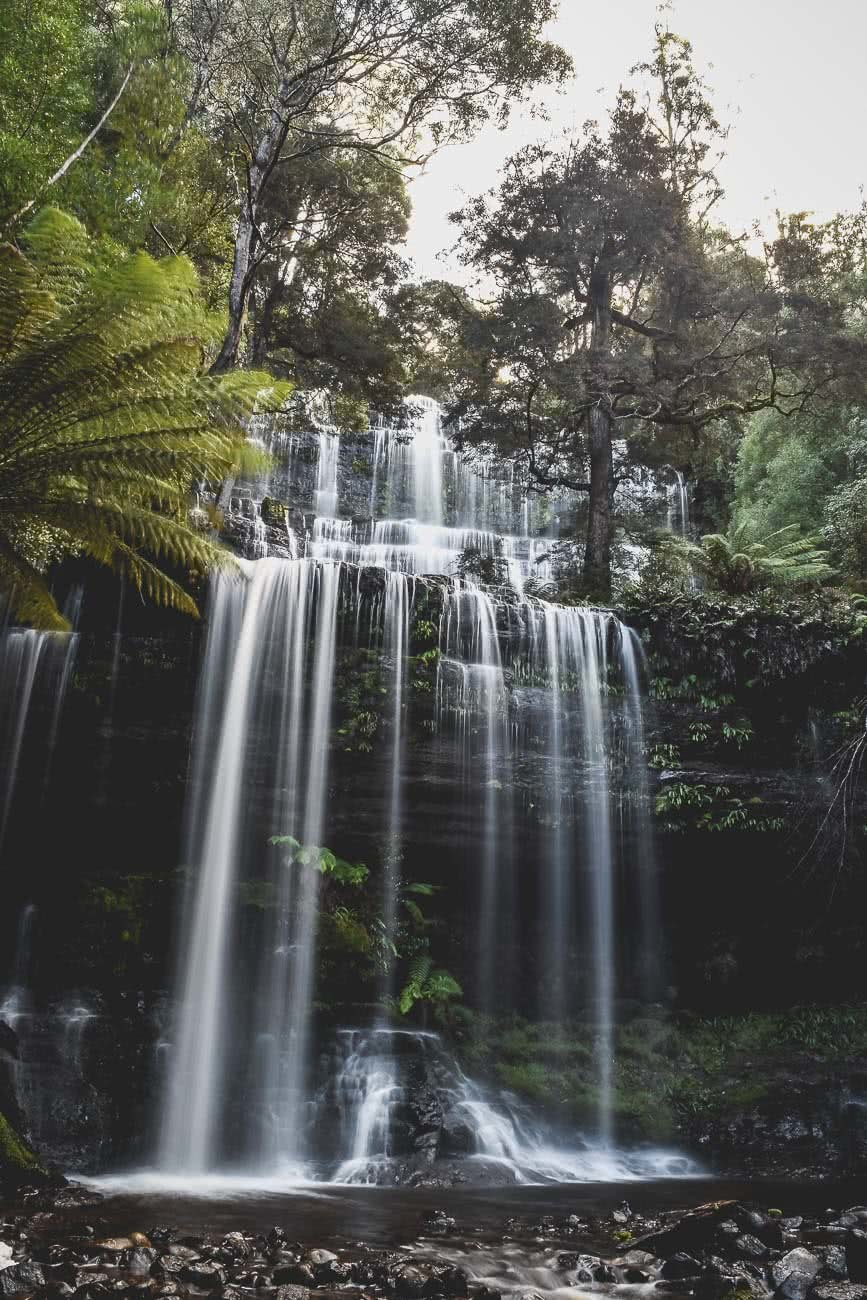 Winter Road Trippin' Tassie // Photo Essay Brent Frondall waterfall, ferns, moss