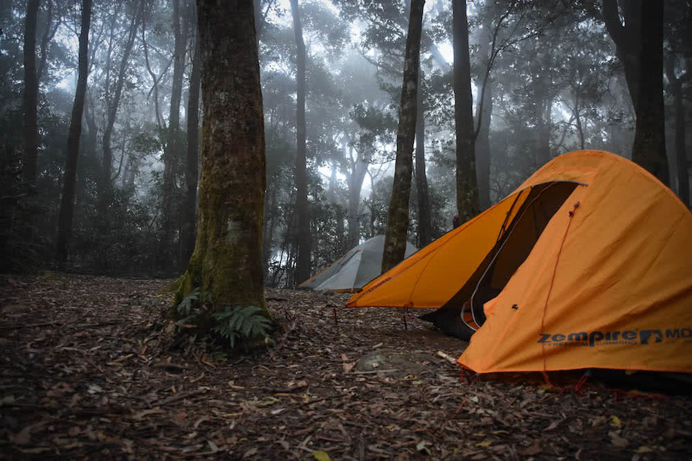 The 21 Best Brisbane Based Outdoor Adventures & Day Trips, Photo by Lisa Owen, camping, adventures, brisbane, outdoors