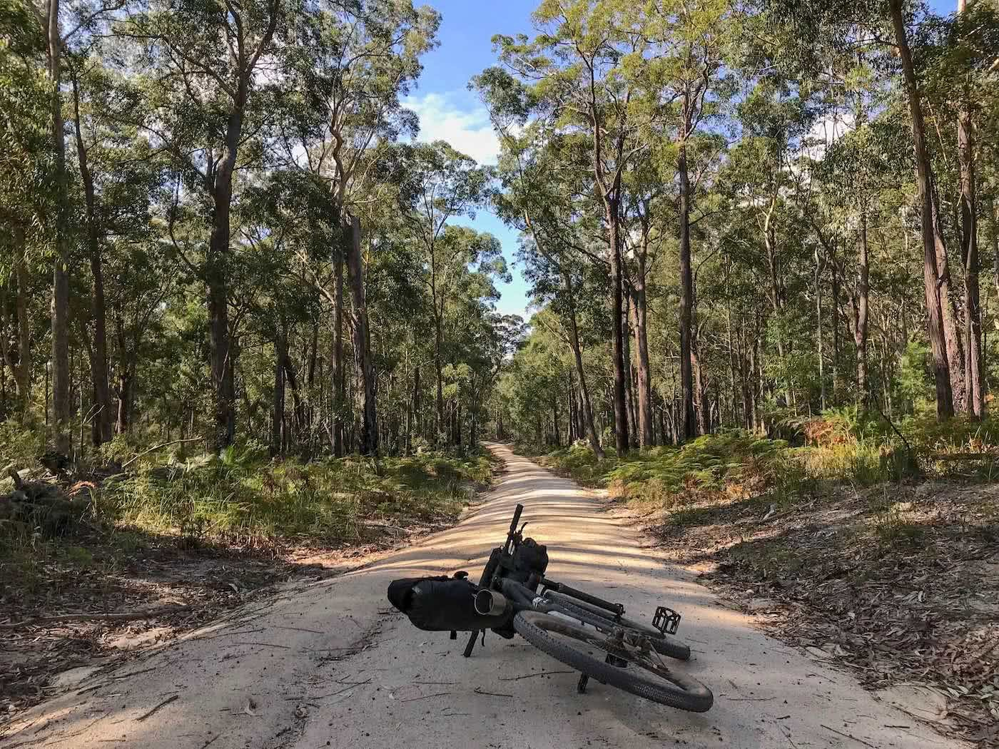 5 Reasons For An Overnight Adventure Mattie Gould bikepacking canberra, fire trails, mogo forest