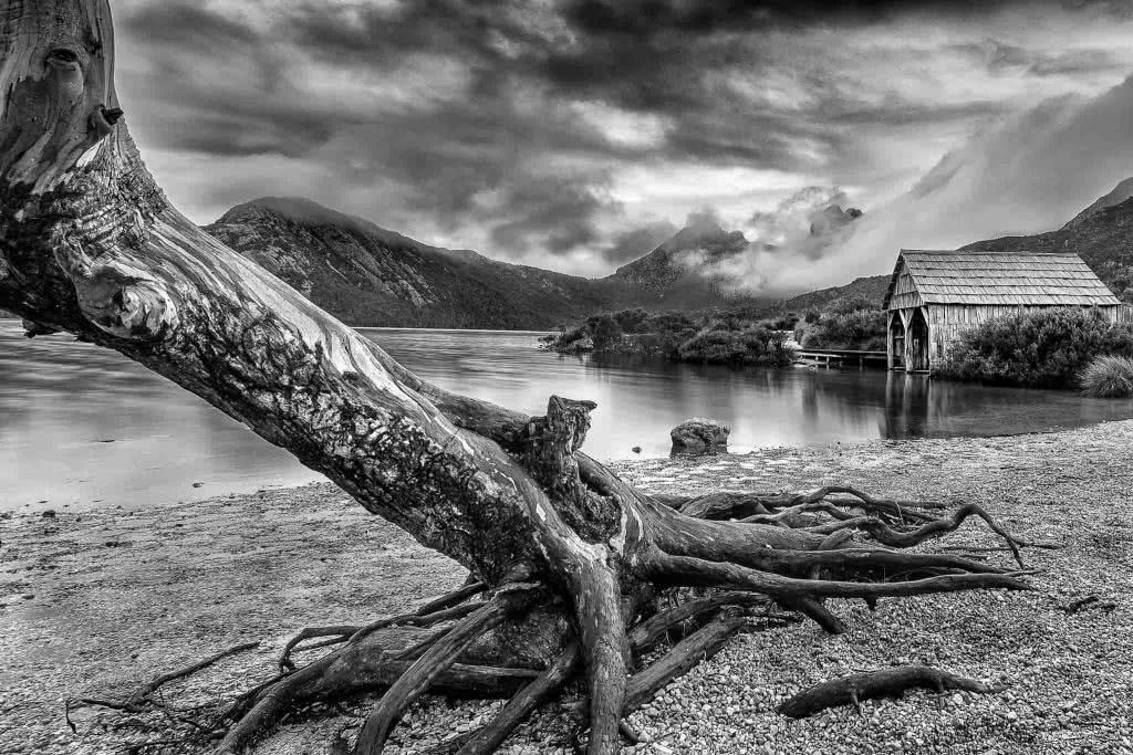 A Photographer's Guide To Shooting Wild Tasmania, Alfonso Calero, Tasmania, photography, lake st clair, black and white