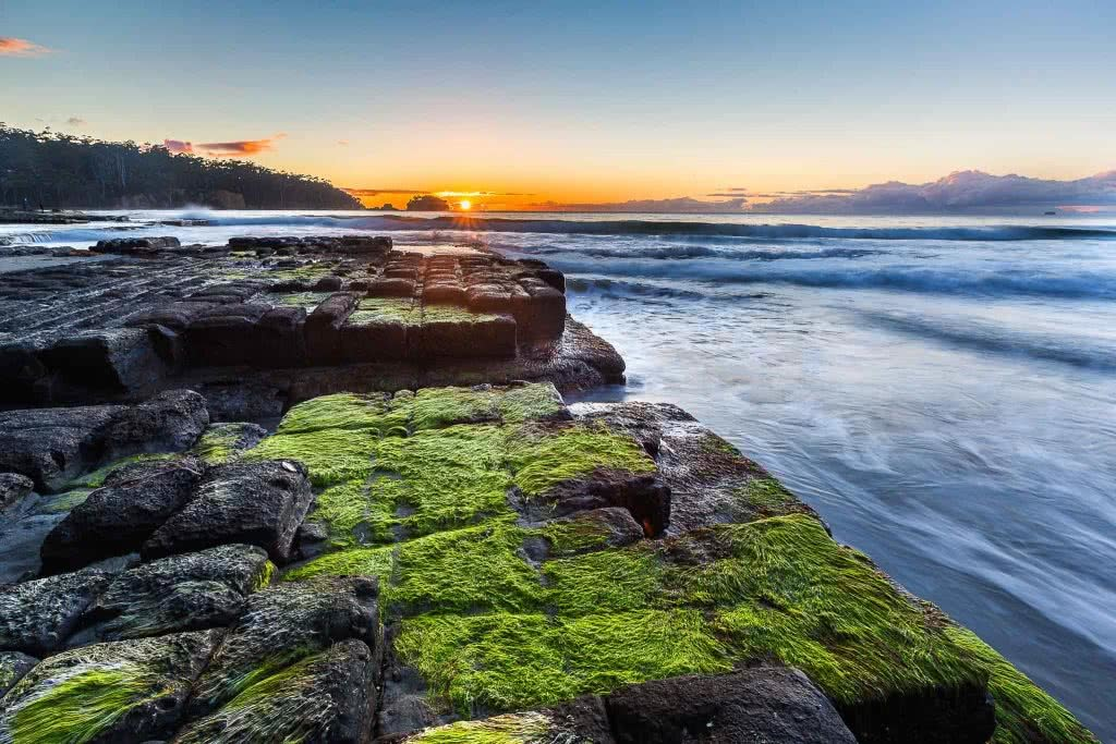 A Photographer's Guide To Shooting Wild Tasmania, Alfonso Calero, Tasmania, photography, tessellated pavement, moss, coastal