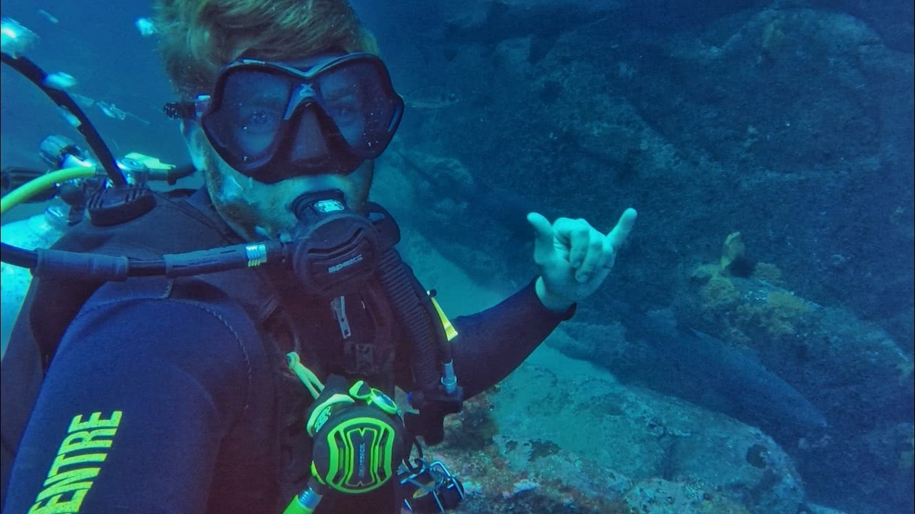 Diving with Sharks! No cage, No worries - Grant Purcell, underwater, scuba, shark, shaka