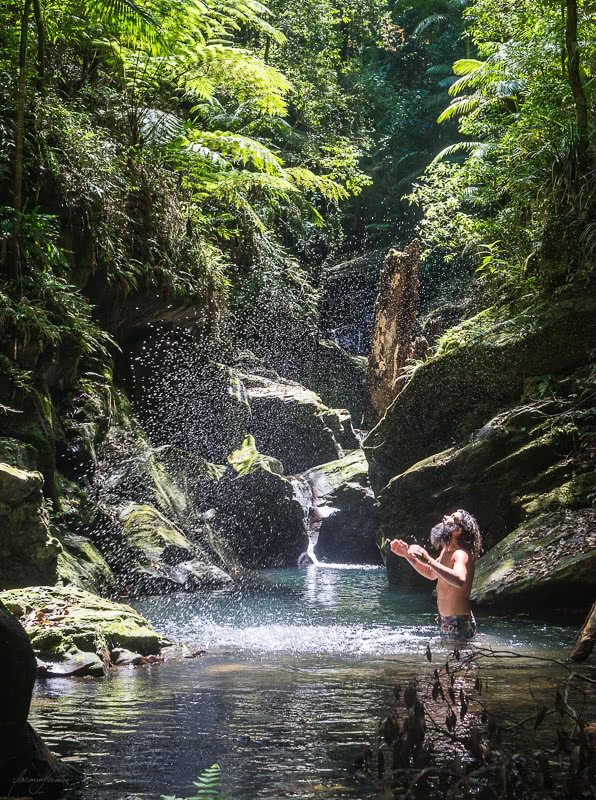 The Great Koala National Park Plans To Link Protected Areas With State Forest To Protect Koalas, Roses Creek State Forest, Photo by Yamin Loraine, wild swimming, pool, sunlight, beard