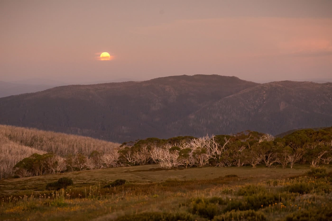 The High Plains on Foot – Four Day Falls Creek Circuit (VIC) Lachlan Fox high plains, moon rise
